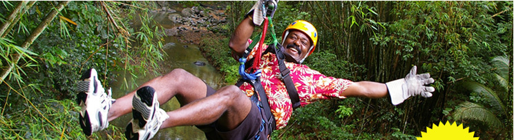 treetop adventure st lucia dennery